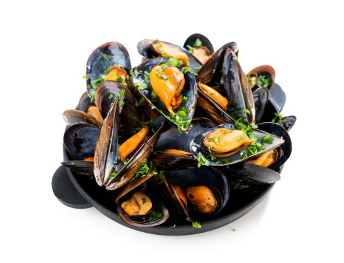 Health Benefits of Mussels